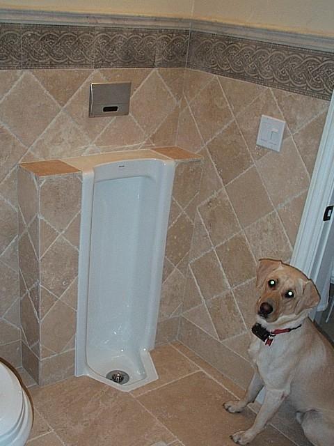 Urinal Dot Net